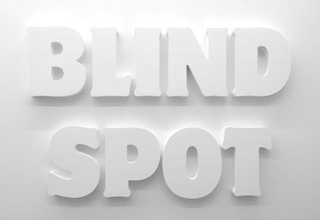 Observation and Blind Spots